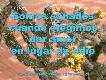 photo-quote