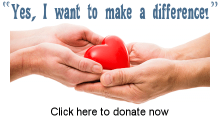 click here to donate now