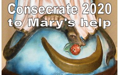 Consecrate 2020 to Mary's Help