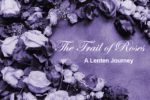 Trail of Roses