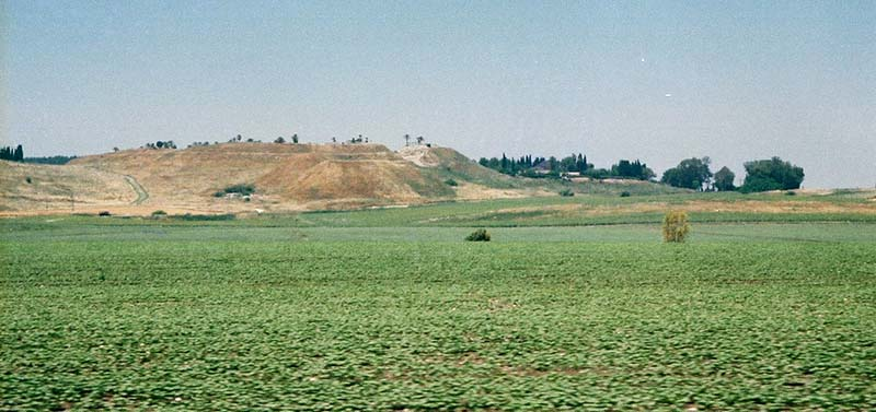 Brown hill of Tel Megido