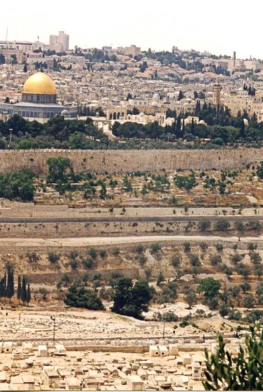 Viewing Jerusalem from the Mount of Olives